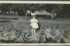 Eloise in  Carrot Bed